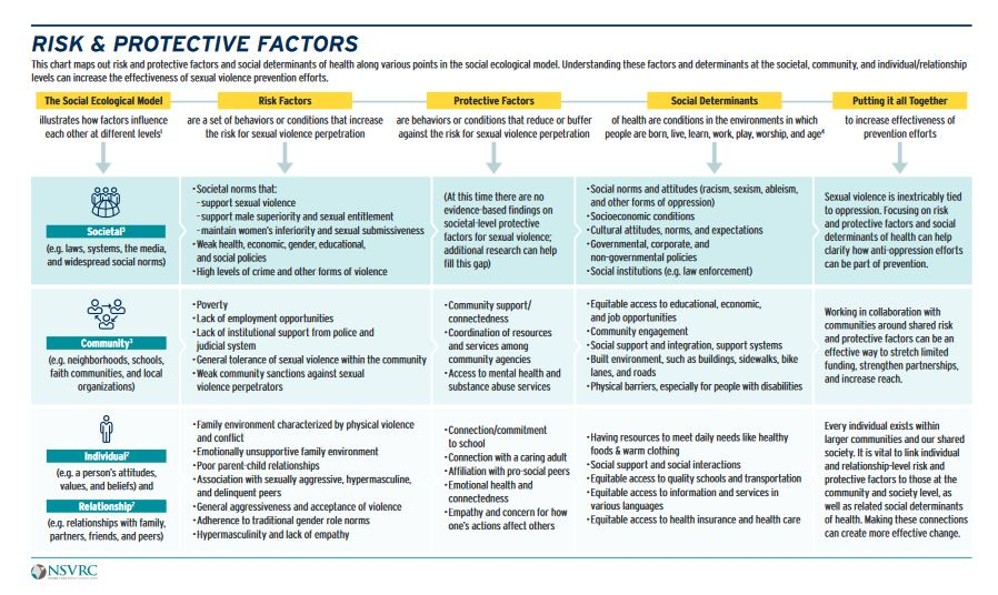 screenshot of risk and protective factor infographic