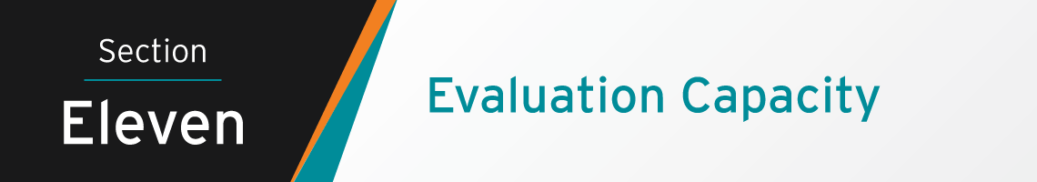 Section Eleven Banner: Evaluation Capacity