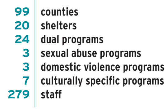 Infographic showing the number of counties, shelters, dual programs, sexual abuse programs, domestic violence programs, culturally specific programs, and staff