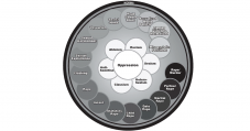 Graphic showingsocial norms in a circle, representing the sexual violence continuum